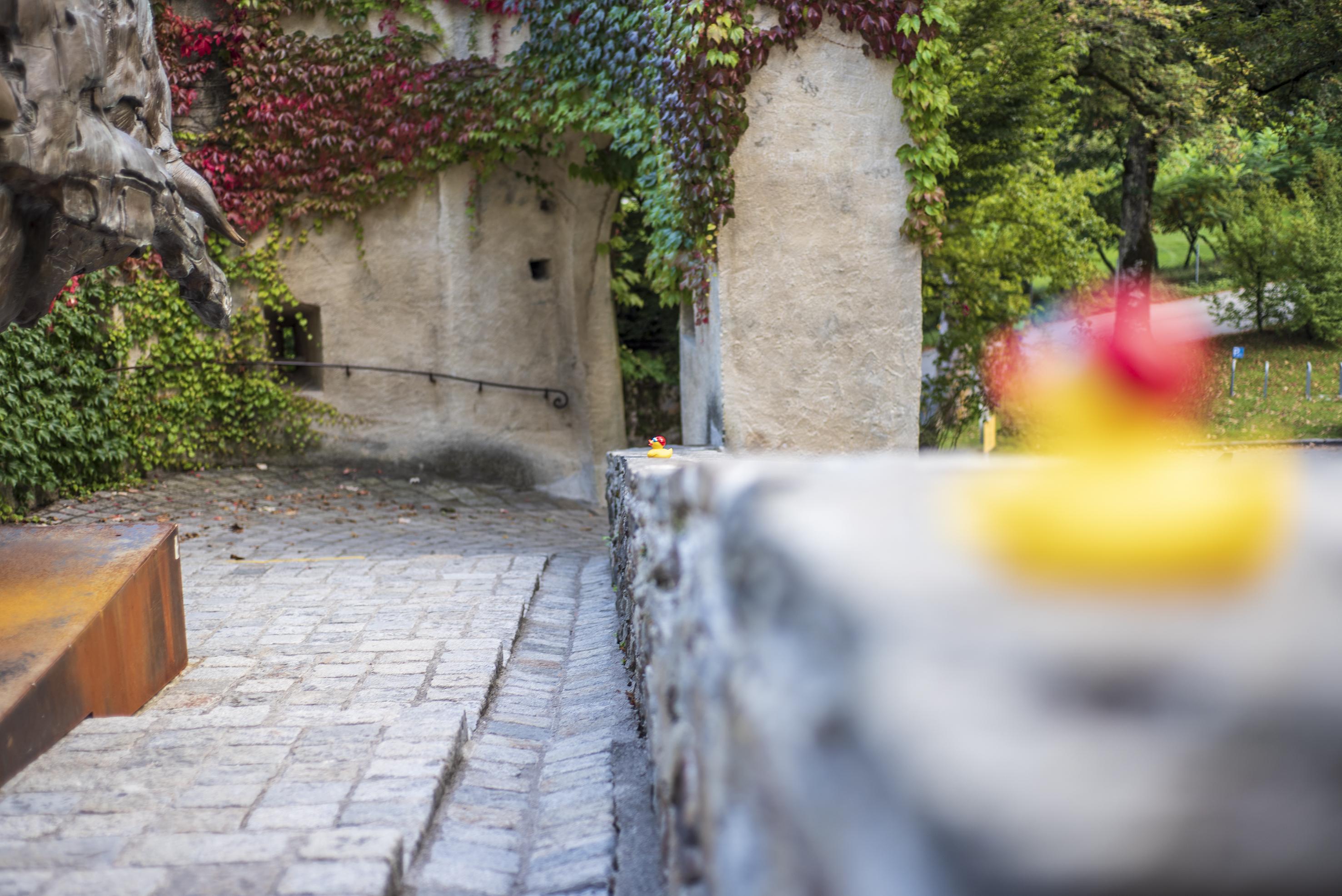 schmetterer-SchlossBruck 10_c-AE